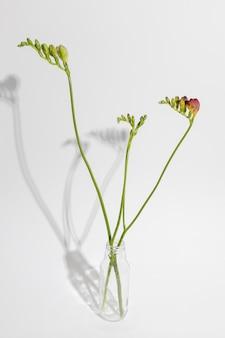 Flor de flor en un jarrón sobre la mesa