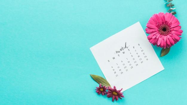 Flor de gerbera con calendario de marzo en mesa.