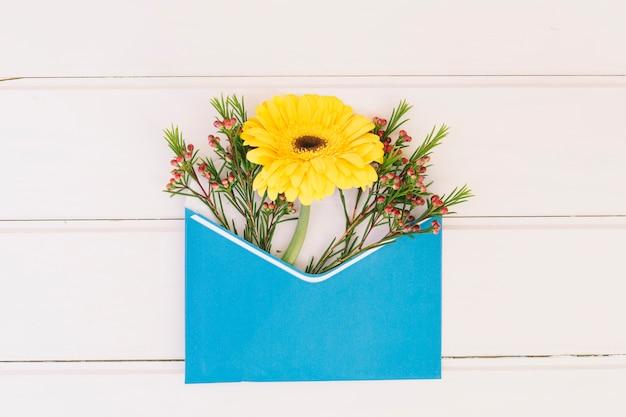 Flor de gerbera en sobre en mesa