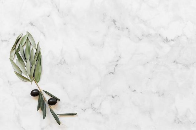 Flor hecha con oliva y hojas en el fondo de mármol blanco