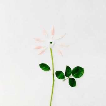 Flor hecha con pétalos sobre fondo blanco