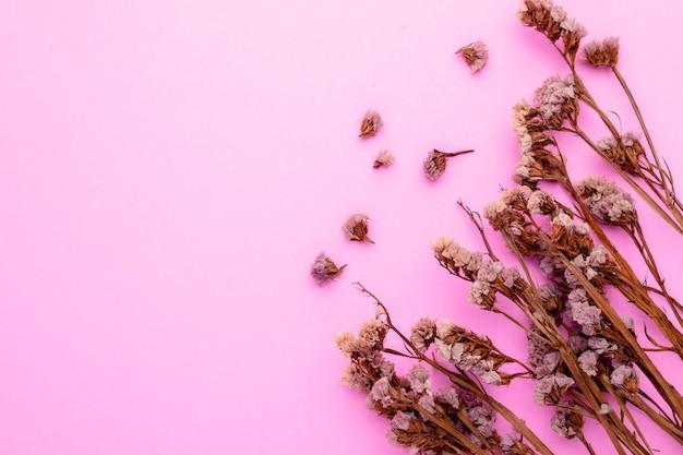 Flor de hierba de color seco de vista superior para decoración de interiores.