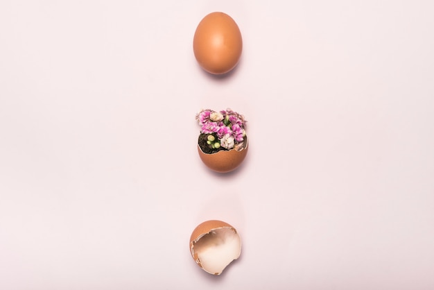 Flor en huevo roto en mesa rosa