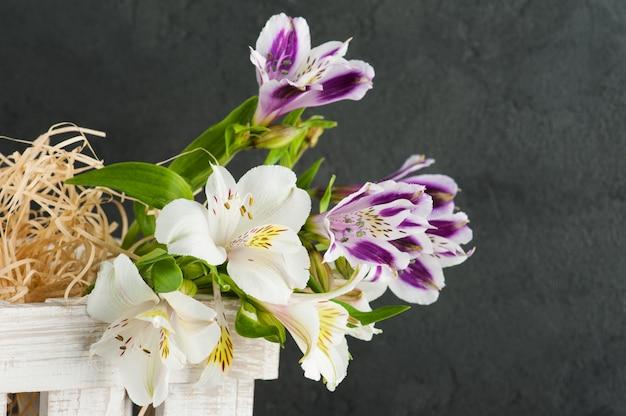 Flor de lirio morado y amarillo en caja de madera blanca