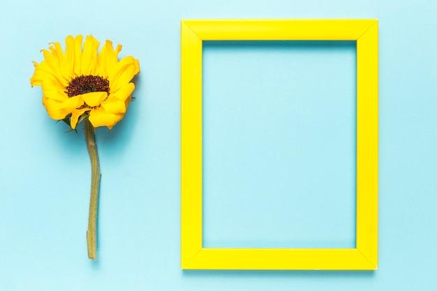 Flor y marco