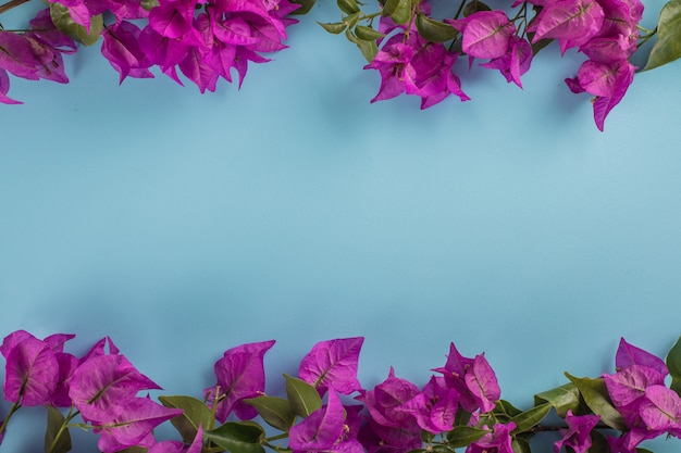 Flor morada con espacio de copia en superficie azul