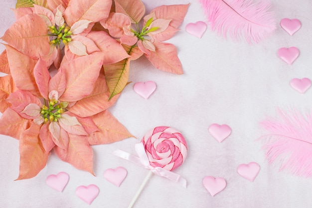 Flor de pascua rosa, corazones de satén rosa, caramelo en un palo y plumas