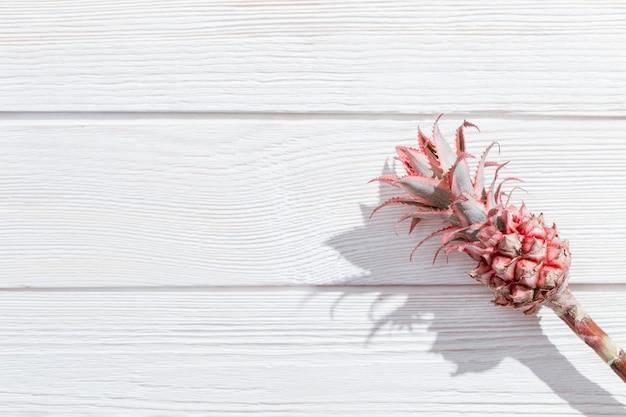 Flor de piña mini rosa ornamental enana sobre fondo blanco de madera con sombras oscuras.