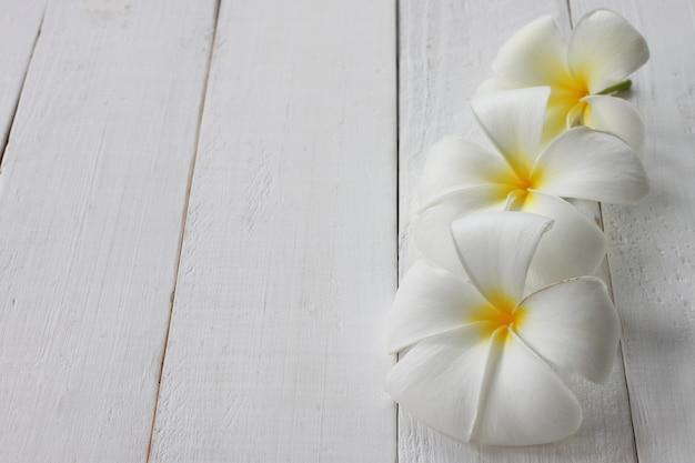 Flor de plumeria en flor se coloca sobre un piso de madera blanco.