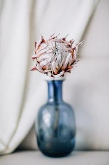 Flor de protea en florero azul.