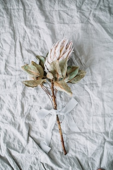 Flor de protea sobre manta de lino gris