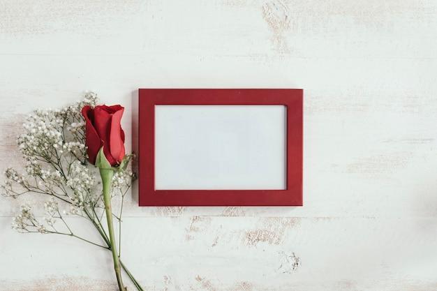 Flor roja y blanca con marco