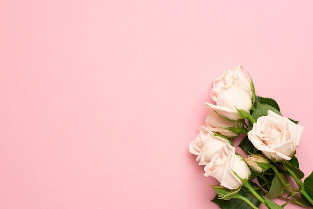 Flor de rosas blancas sobre fondo rosa con espacio de copia para la vista superior de su texto