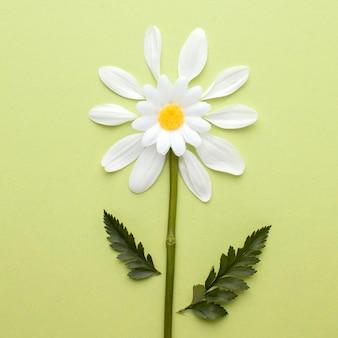 Flor de la vista superior hecha de pétalos