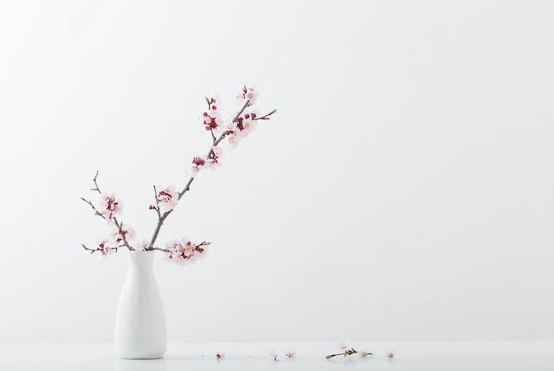 Floración rama de cerezo en florero sobre fondo blanco.