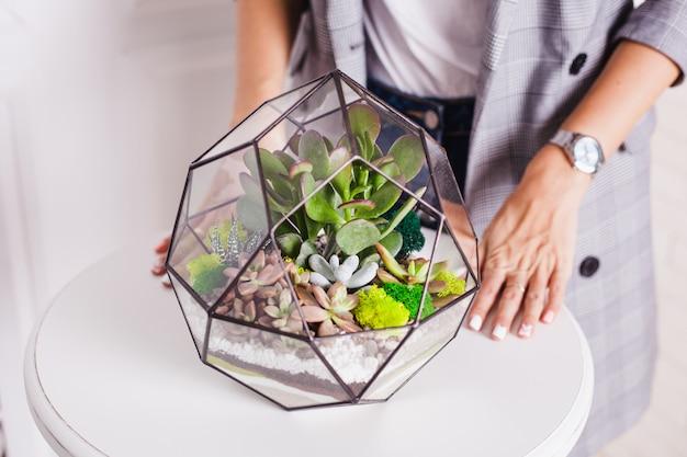 Florarium, composición de suculentas, piedra, arena y vidrio, elemento de interior, decoración del hogar, terarium de vidrio.
