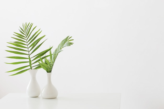 Florero blanco con hojas de palma sobre fondo blanco.