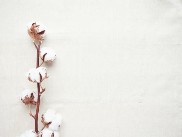 Flores de algodón sobre tela de algodón