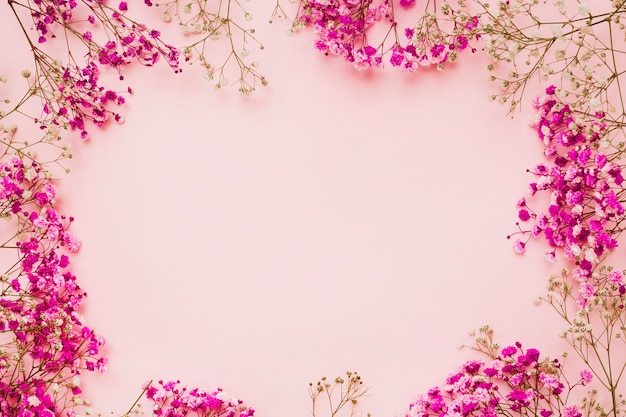 Flores de aliento de bebé con espacio para texto en el centro.