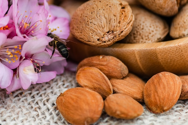 Flores de almendras con polinización de abejas (apis mellifera), frutos de almendras, almendras con cáscara en un tazón de madera, almendras sin cáscara en la superficie del saco