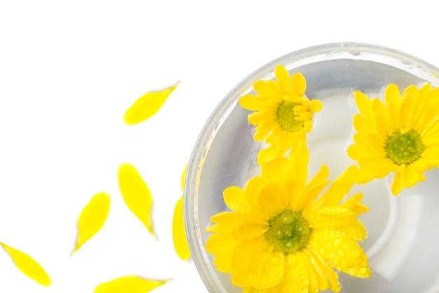 Flores amarillas cerca flotando en el agua