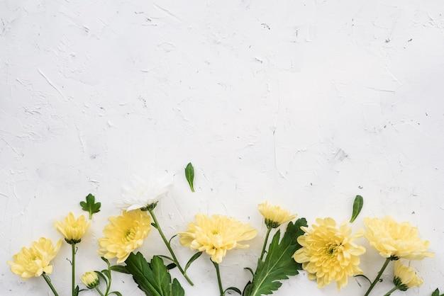 Flores amarillas de clavel y espacio de copia