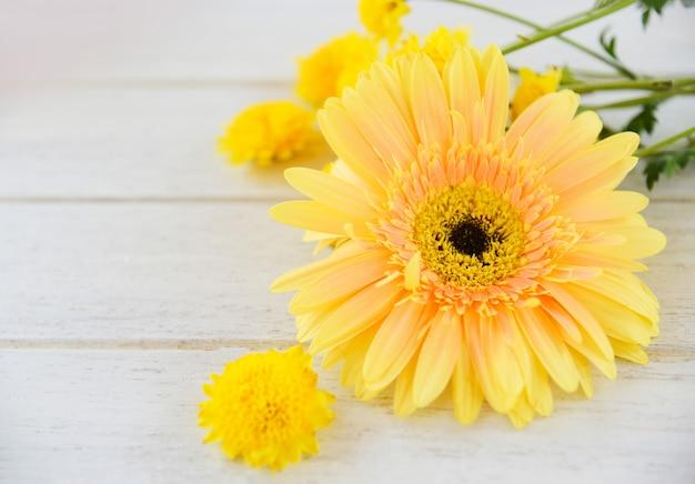Flores amarillas de la momia y flores del resorte del gerbera en la madera blanca