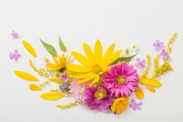 Flores amarillas y rosas sobre fondo blanco.