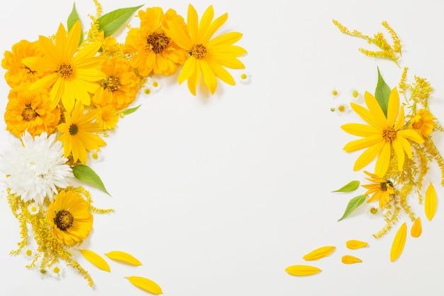 Flores amarillas sobre fondo blanco