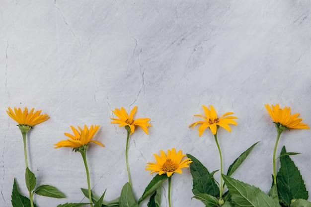 Flores amarillas sobre un fondo de mármol