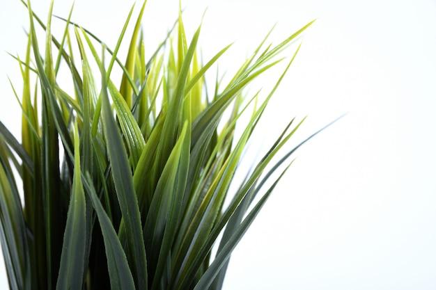 Flores artificiales hierba diferente forma en una maceta aislada