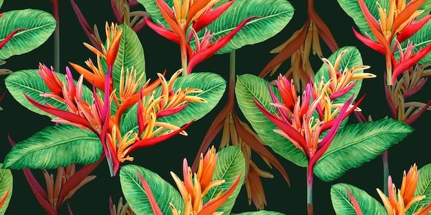 Flores de ave del paraíso de pintura acuarela, patrón transparente de colores
