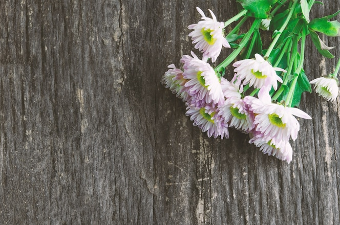 Flores blancas del crisantemo en baclground de madera