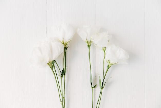 Flores blancas, hojas verdes. flatlay creativo en el fondo de madera blanca. fondo floral.