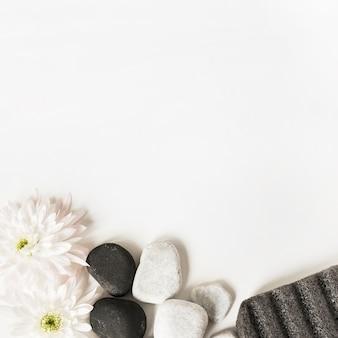 Flores blancas; la piedras y piedra pómez aislado sobre fondo blanco