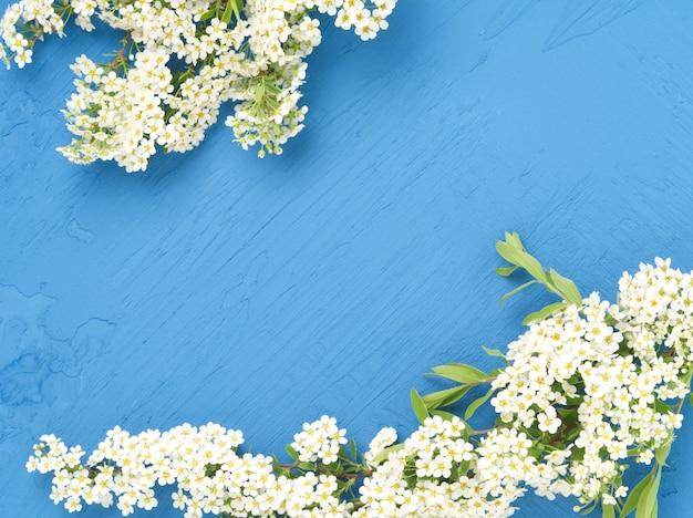 Flores blancas sobre fondo de hormigón azul oscuro. telón de fondo copyspace