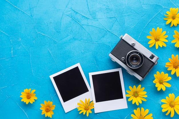Flores de cardo de ostras españolas y cámara polaroid