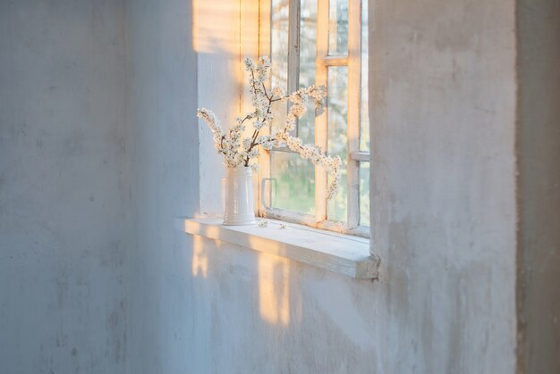Flores de cerezo en jarra blanca en el alféizar de la ventana al atardecer