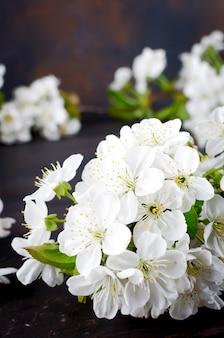 Flores de cerezo en woodenon oscuro