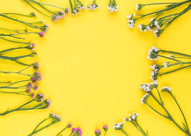 Flores circulares de color rosa y blanco sobre fondo amarillo
