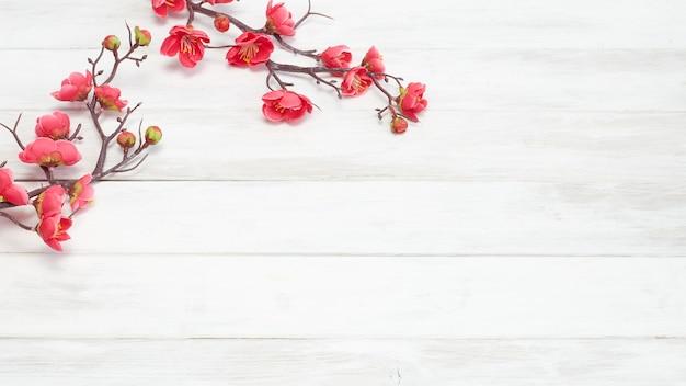 Flores de ciruela flor en tablón de madera blanca