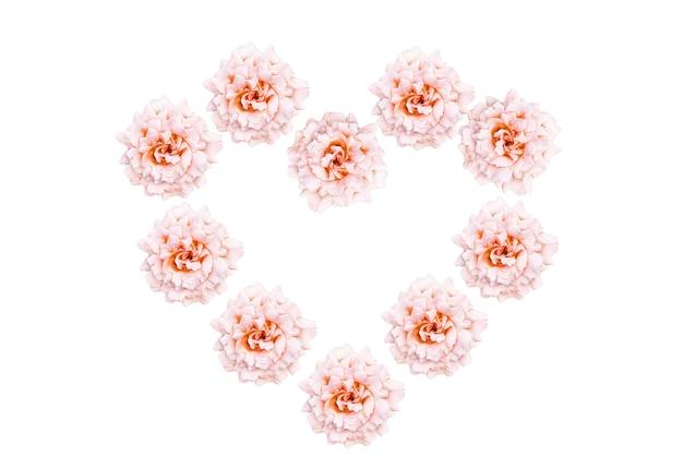 Flores color de rosa en forma de corazón aislado en blanco