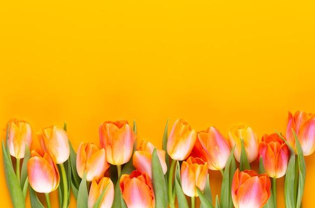Flores de colores pasteles amarillos sobre fondo amarillo. esperando la primavera. tarjeta de pascua feliz. vista plana endecha, superior. copie el espacio.