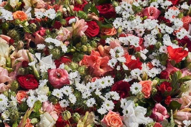 Flores coloridas. tarjeta de felicitación.