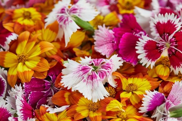Las flores comestibles tienen una gran selección de colores y sabores.