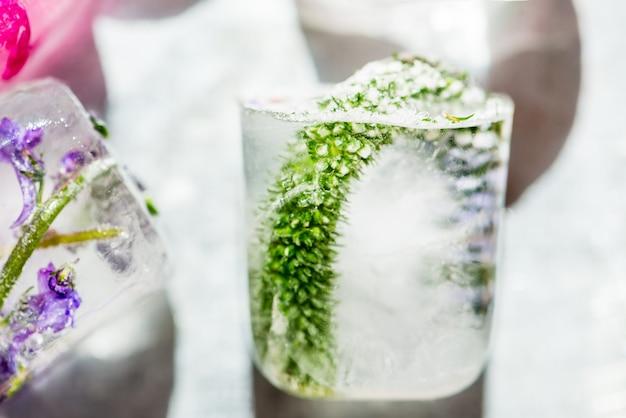 Flores congeladas en cubitos de hielo