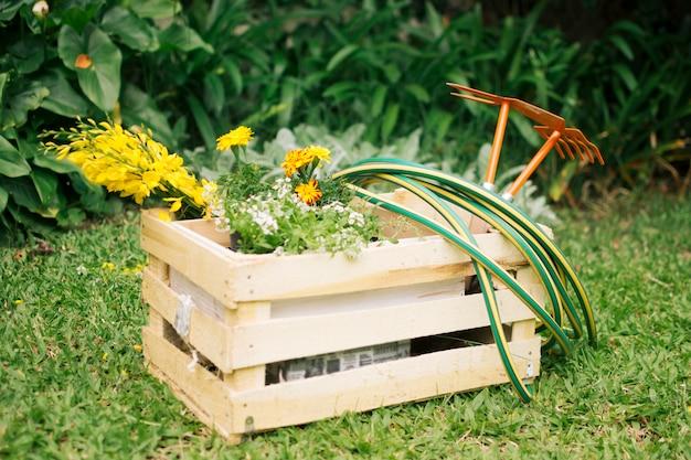 Flores y equipo de jardinería en contenedor de madera en prado cerca de plantas