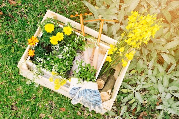 Flores y equipo de jardinería en contenedor de madera.