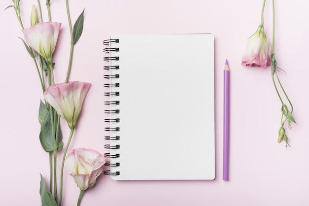 Flores de eustoma; cuaderno espiral en blanco con lápiz púrpura sobre fondo rosa