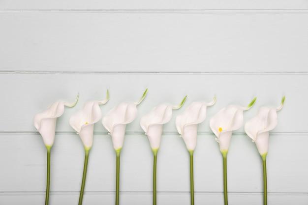 Flores florecientes alineadas en la mesa con espacio de copia